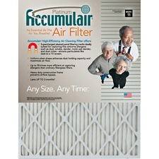 Platinum Air Filter